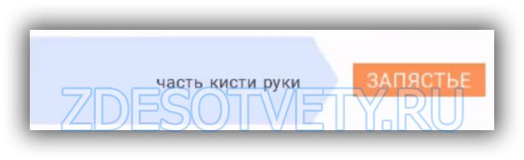 2_podskazki_27_019_wm